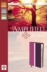 Amplified Bible Dark OrchidPlum BndLthr