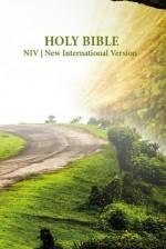 NIV Holy Bible Roadway (PB)