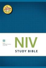 NIV Study Bible (HC)