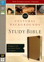 NIV Cultural Background Study Bible Brwn