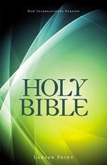 NIV Holy Bible Large Print (PB)