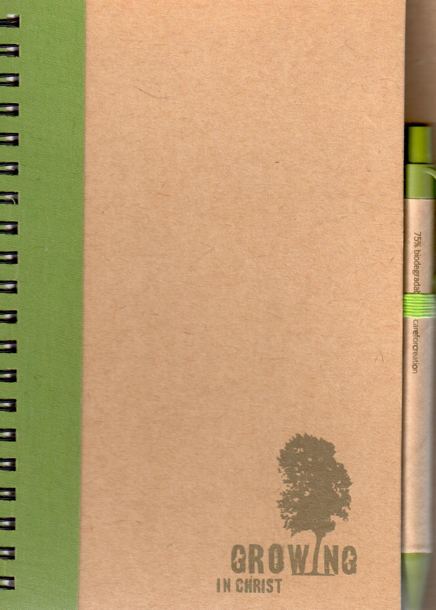 Notebook (Eco Care Large) (Assorted)